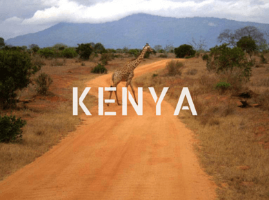 Kenya travel guides