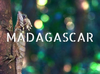 madagascar africa travel guides