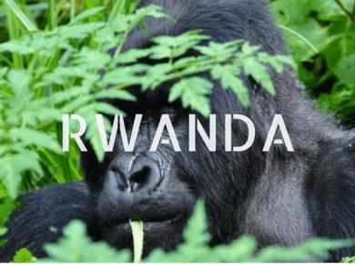 Rwanda Travel Guides Africa