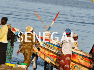 Senegal Travel Guides