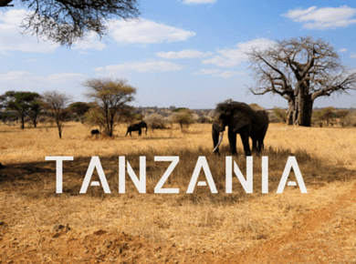 Tanzania Travel Guides