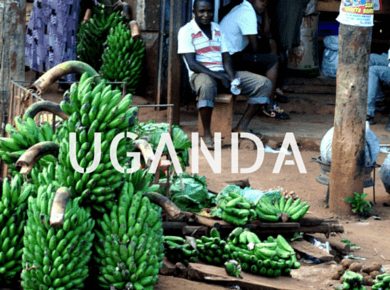 Uganda Travel Guides