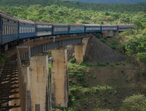 Tazara Train Operations Suspended