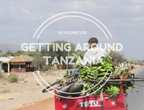 Getting Around Tanzania on Local Transport Guide