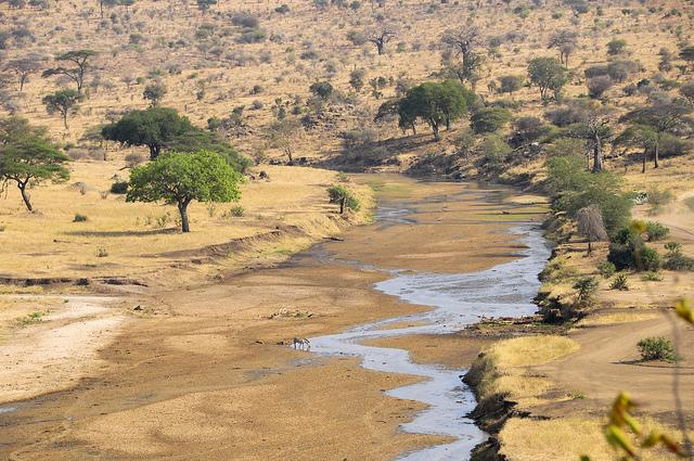 tarangire national park review