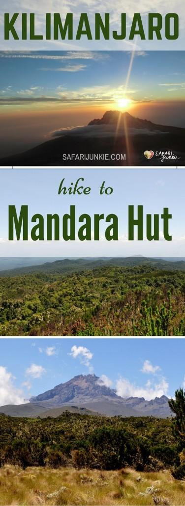 Kilimanjaro hike Mandara Hut