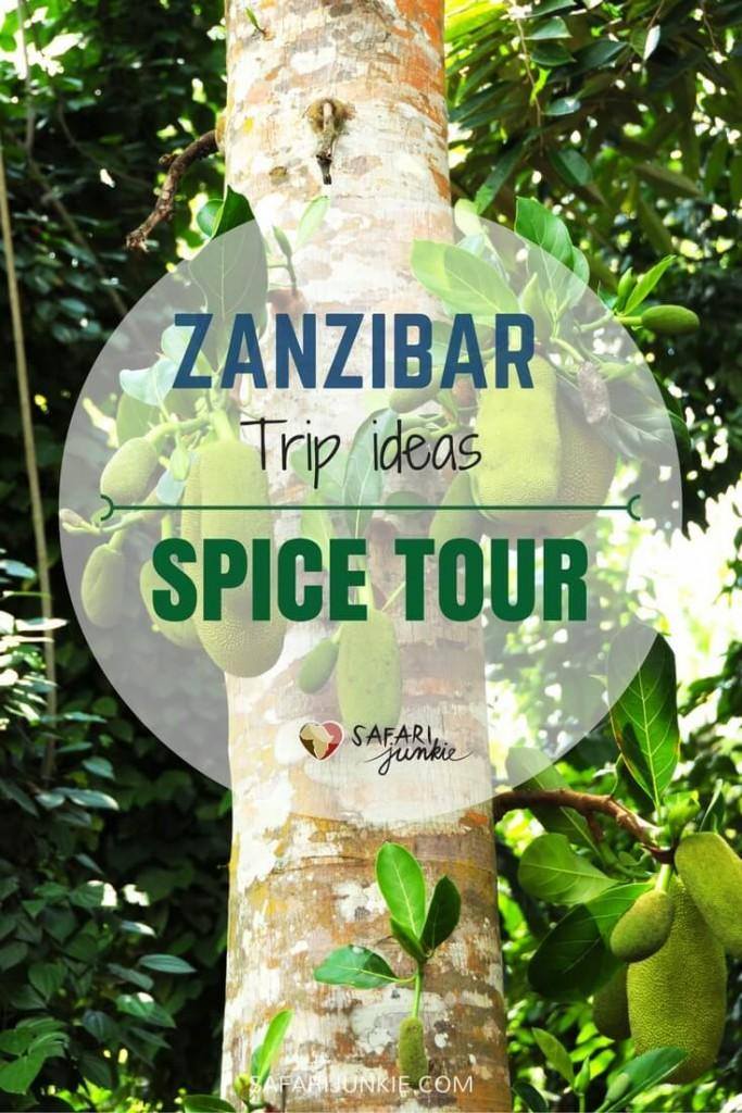 Spice Tour on Zanzibar
