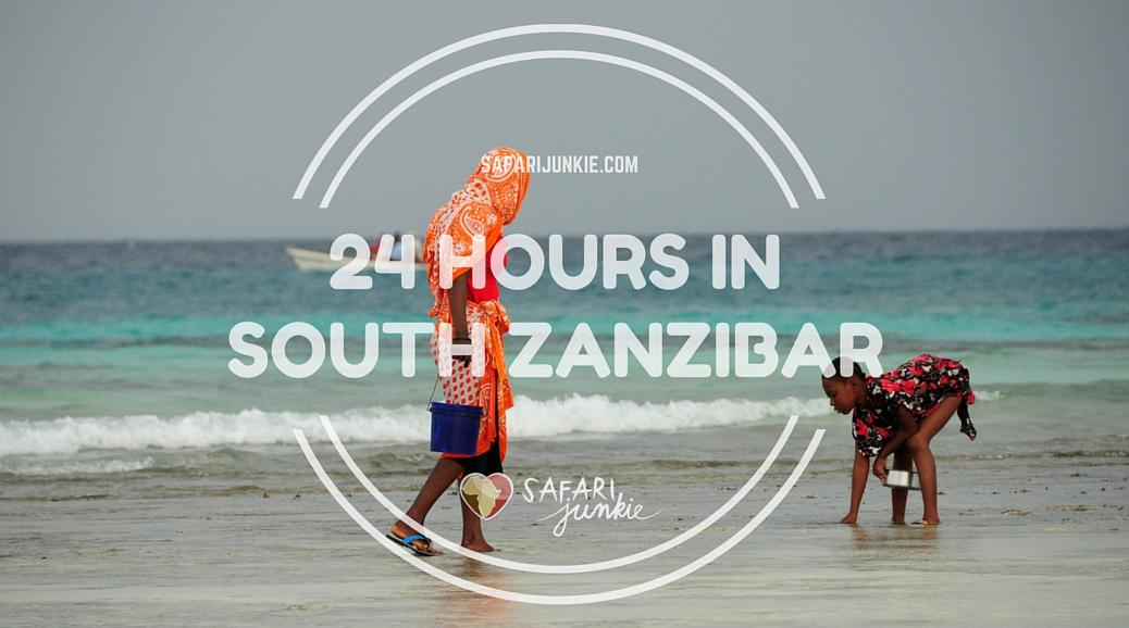 things to do on zanzibar south 24 hour guide