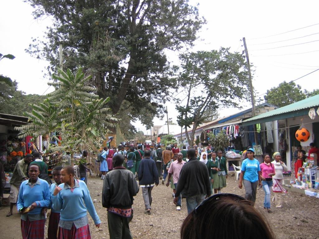 what to do in arusha nane nane market