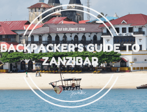 Backpackers Guide to Zanzibar