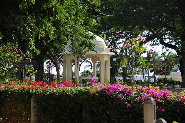 forodhani park during the day stone town