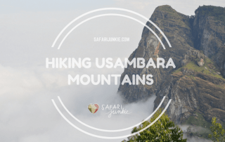 hikes in Tanzania - hiking and trekking in Usambara mountains