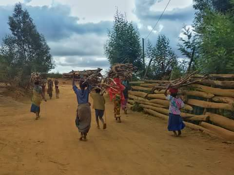 lushoto hiking and village life in usambara mountains