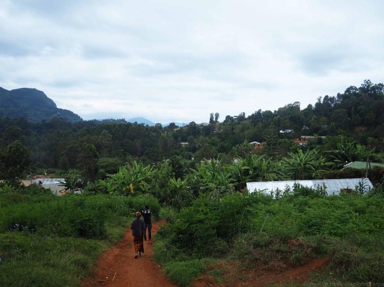 lushoto hiking tours in usambara mountins tanzania