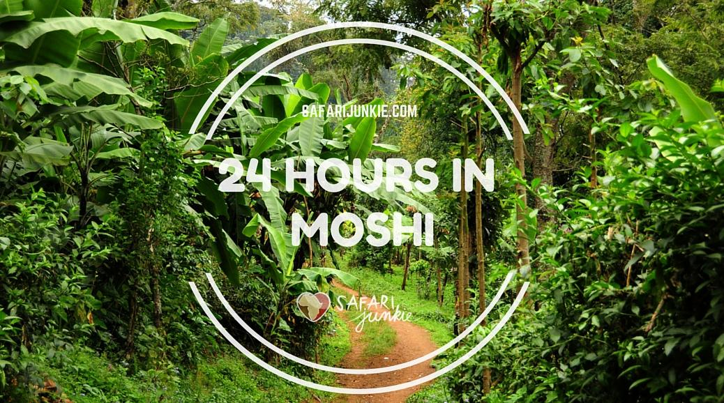things to do in moshi 24 hours in moshi gudie