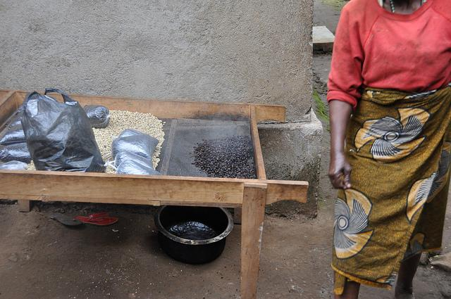making coffee in Moshi things to do in Tanzania
