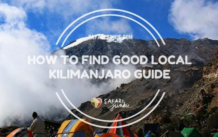 Where to Look for Good Reliable Kilimanjaro Tours and Guides