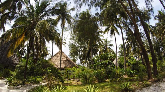 ndame-beach-lodge-zanzibar-gardens-and-bungalows-privacy