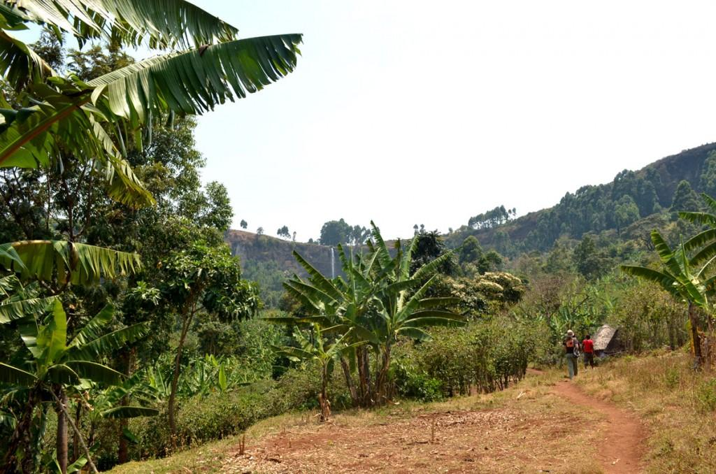 travel with a local in Uganda hike to Sipi falls