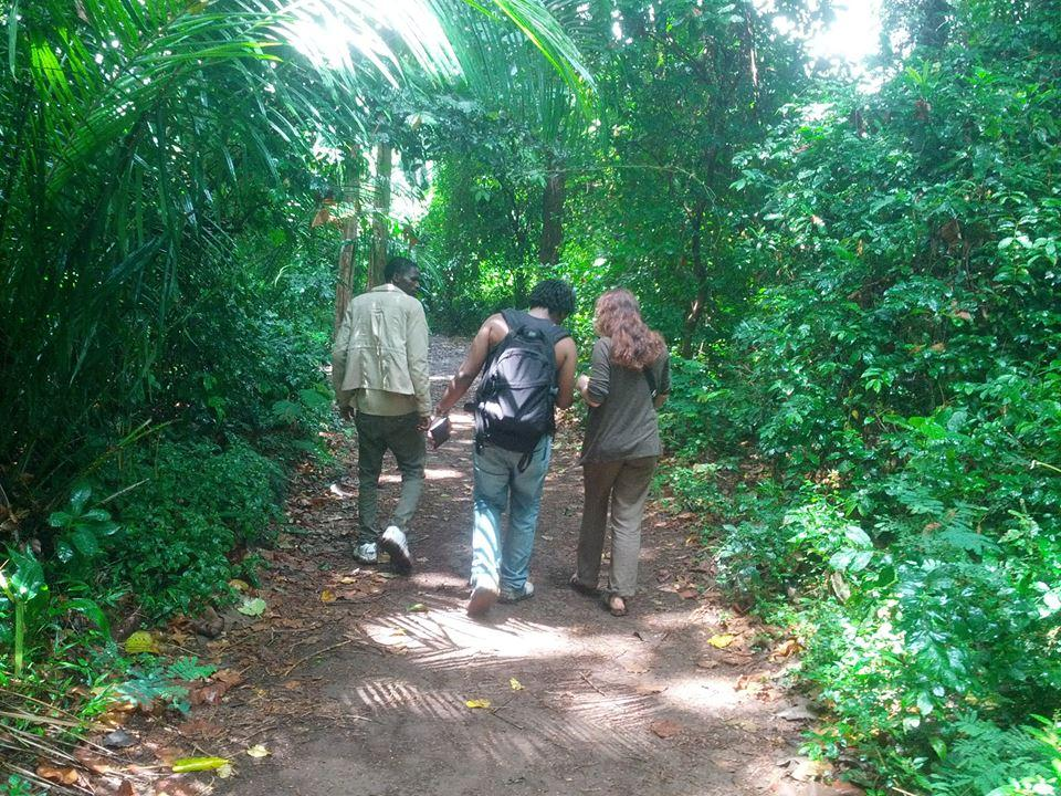 Full Day Hike at Rau Forest Reserve Near Moshi tanzania travel with local hikes near moshi town