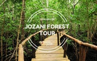 jozani forest tour zanzibar chwaka bay national park