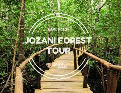 Jozani Forest Tour on Zanzibar
