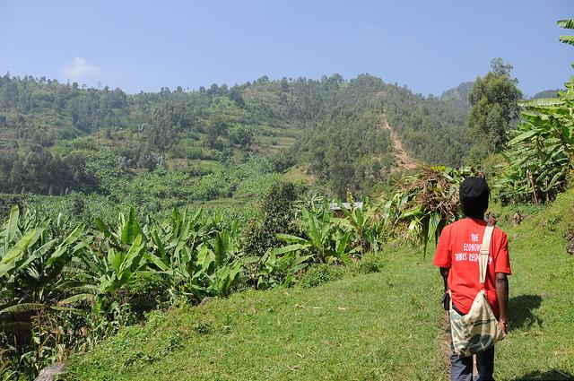 village hikes arund Musanze guide