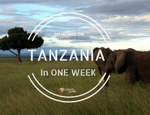 Tanzania One Week Itinerary Ideas
