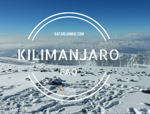 Kilimanjaro Trekking Guide – All You Need to Know to Climb Roof of Africa