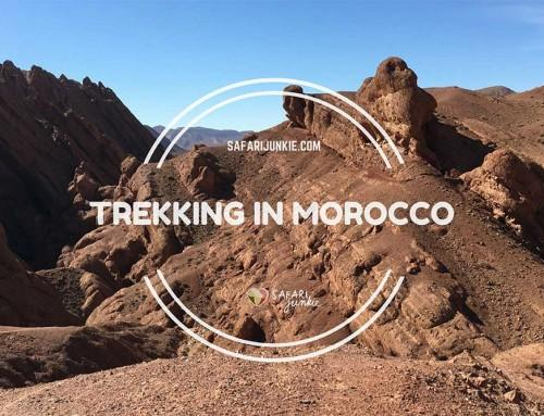 Trekking the Monkey Fingers Canyon in Dades Valley