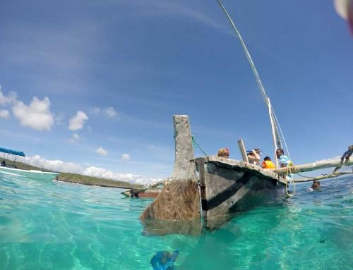 Snorkeling with Dhow in Blue Lagoon on Zanzibar