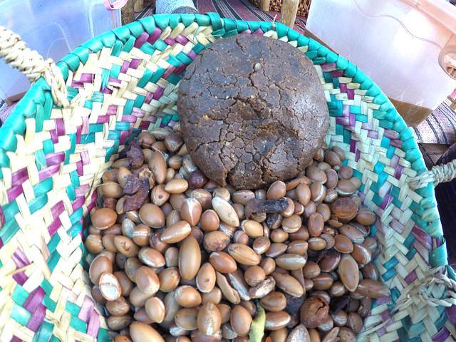 argan-nuts-morocco