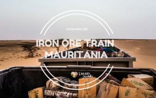 Iron Ore Train Experience