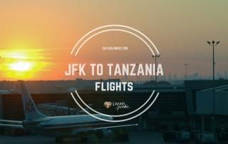 Flights to Tanzania from New York